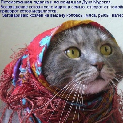 Люся Кузнецова, 18 апреля , Вологда, id68375141