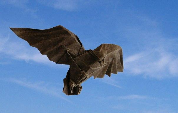 Орел оригами за схемой Christophe Boudias.