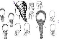 Коса из четырёх и более прядей (схема 1). Коса в технике колосок обычно используется как самостоятельная причёска и...