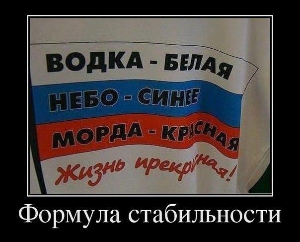 """Паводок затопил дома на Львовщине: """"По двору гуляют аисты"""" - Цензор.НЕТ 822"""