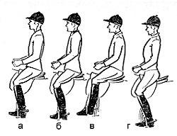 Как правильно сидеть в седле