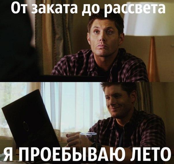 Олег Шевчук   Львов
