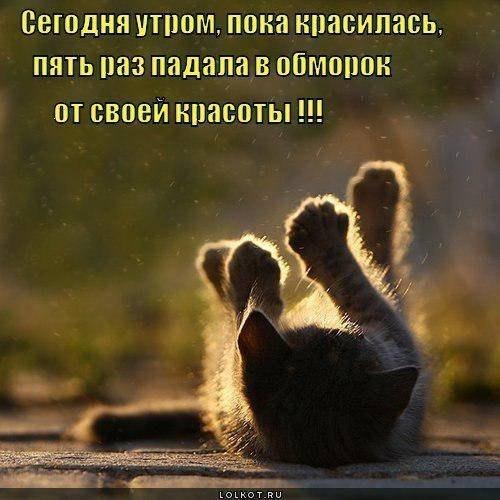 http://cs317218.userapi.com/v317218995/5468/YDGLBME70pU.jpg