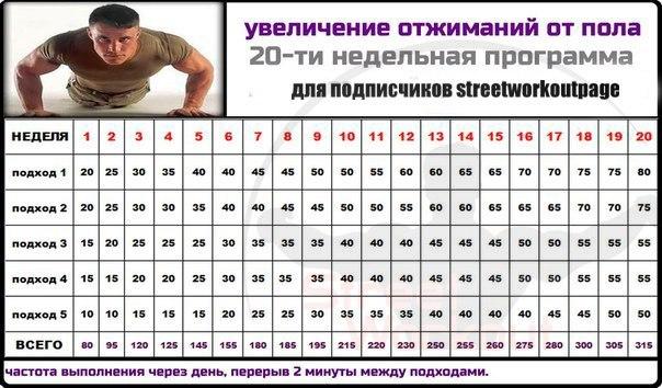 Схема тренировок отжиманий от