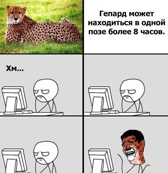 Ігор Пущинський |