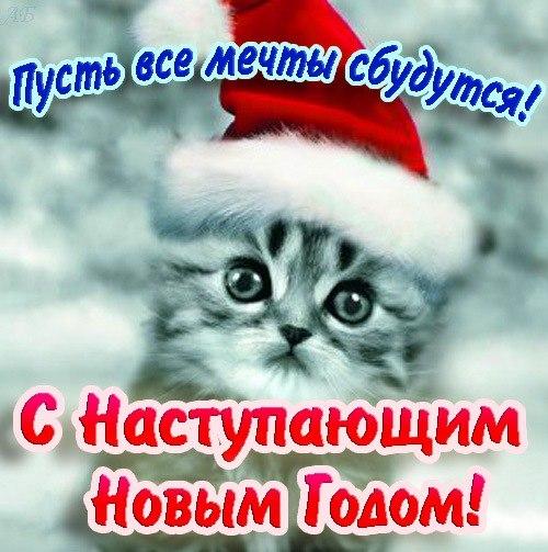 Фото №292276708 со страницы Александра Казанбаева