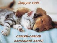 сон,ночь,сладких снов,сладеньких снов,спокойной ночи,приятных снов,другу,подруге,подрузі,приємних снів,