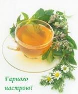 хорошего настроения,настроение,другу,подруге,чай,напиток,чашечка чаю,лето,зима,цветы