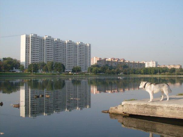 http://cs323.vkontakte.ru/u80552708/108852320/x_a827a45d.jpg