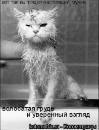 Алина Юрьева, 12 февраля , Москва, id73904409