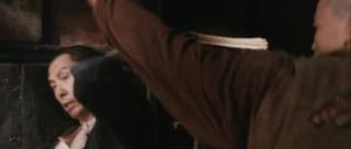 Donnie Yen vs Yu Kang)) · #coub, #коуб