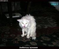 Димка Свистухин, 19 сентября 1993, Ставрополь, id31407909