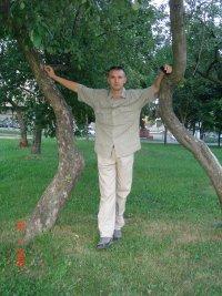 Денис Less, Горки
