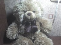 Тори Медведь, 5 октября 1986, Старый Оскол, id1489022