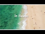Nick Kamarera feat. Alinka - Hawaii (Lyric Video)