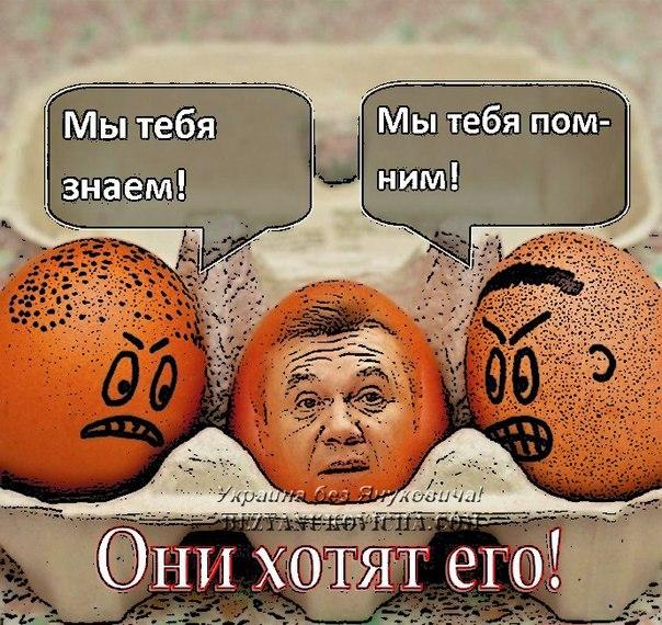 Гаишники хотят одеть водителей в оранжевые жилеты - Цензор.НЕТ 2263