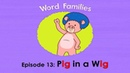 Word Families 13 Pig in a Wig