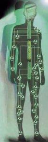 ИУ-4 (клуб выпускников)