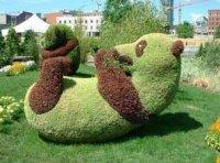 Вуди Вудпекер, Красноярск, id1500069