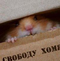 Евгений Недождий