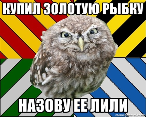 https://cs4120.vkontakte.ru/u38975880/140828935/x_33383138.jpg