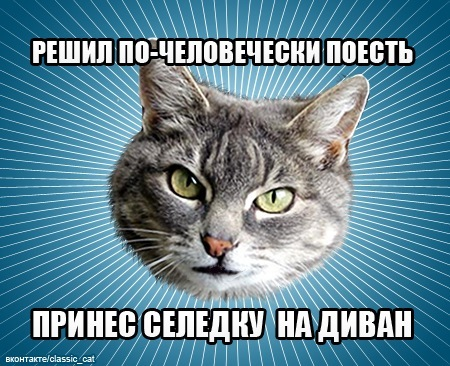 http://cs4120.vkontakte.ru/u675869/140082175/x_4a3fce9e.jpg