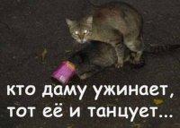 Васек Резкин