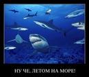 Alexey Biryukov фото #44
