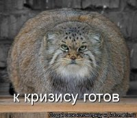 Денис Парамонов, Орел, id10800092