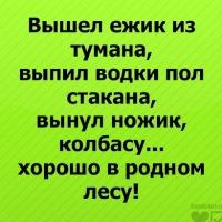 Анаастасия Чижикова, 4 июля 1997, Киров, id150746453