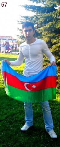 Ferhat Musayev, Шамкир