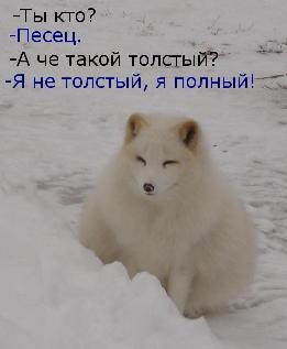 https://pp.userapi.com/c4319/u7140377/-6/x_67fe078d.jpg