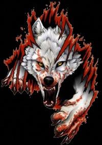 злые волки картинки