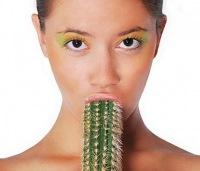 кактусы прикольные картинки