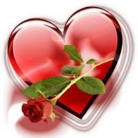 Фото цветы и любовь