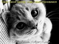 Юльчёнок Klinyshkova, 19 февраля , Нижневартовск, id130477244