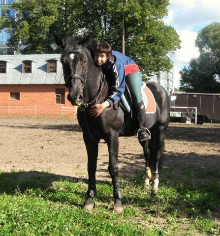 Наше увлечение - лошади - Страница 3 X_903ff5e5