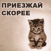 Салютик Алька, 5 февраля 1990, Иркутск, id68248019