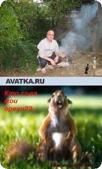 Игорь Лопатко, Рустави