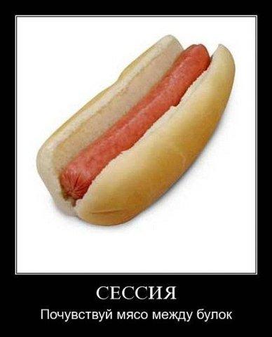 http://cs4391.vkontakte.ru/u43215249/106281376/x_d390d7eb.jpg