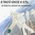 Adilhan Karsakpaev, 31 декабря 1993, Белая Церковь, id165104659