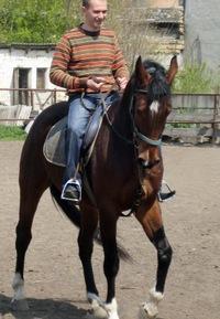 Александр Кравец, 28 октября 1983, Одесса, id19403506