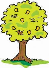 Mango Tree, 1 октября , Москва, id138606740