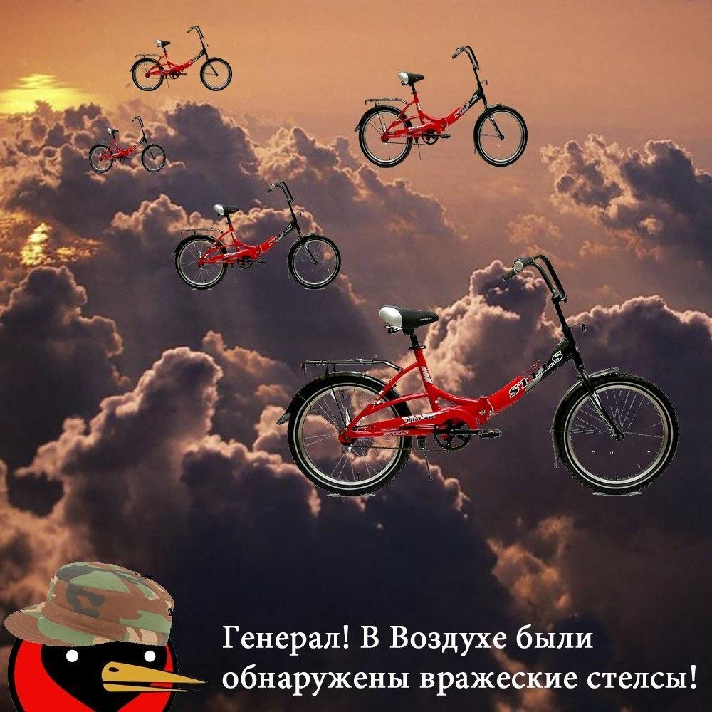z_98d70031.jpg