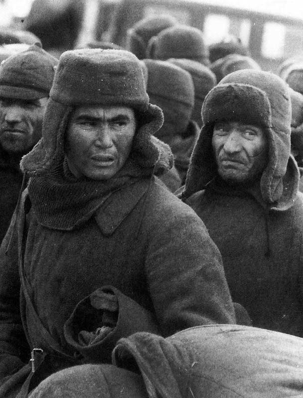Солдаты и телка 16 фотография