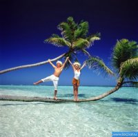 Более 220 туристов MIBS travel застряли в аэропорту Доминиканы.