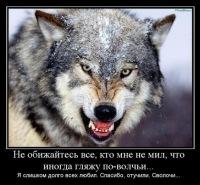Андрей Смирнов, 13 октября 1981, Киселевск, id64136886
