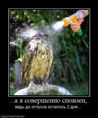 Павел Грищенко, 11 января 1990, Хмельницкий, id138606750