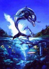 Дельфины 5: предпросмотр.