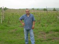 Иосиф Гогинашвили, Сигнахи